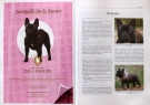 The World of Frenchies in 2009 and 2010 ● Příklady inzerátů ● Sample ads